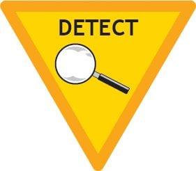 BROWNIE Year 1 Detect